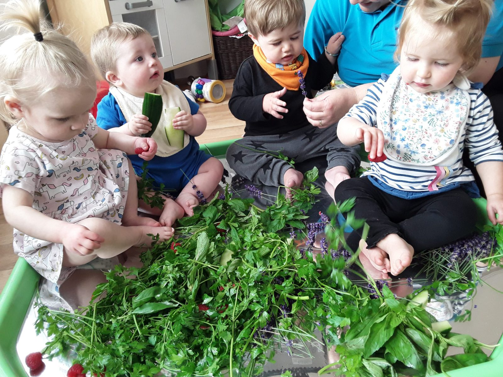 Teeny Weenies Sensory Activity with Herbs